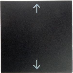 Wippe mit Aufdruck Symbol Pfeile B.1/B.3 /B.7 Glas anthrazit matt