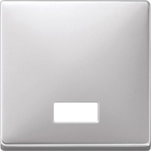 Wippe mit rechteckigem Symbolfenster aluminium System Fläche