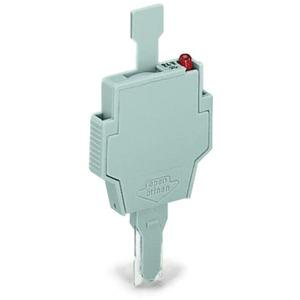 Sicherungsstecker mit Lasche für G-Sicherungseinsätze 5 x 20 mm / 5 x