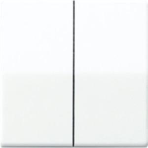 Wippe Zentralplatte bruchsicher für Serien-Wippschalter -Tastschalter