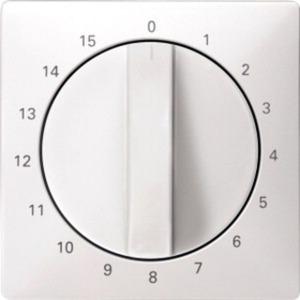 Zentralplatte für Zeitschalter-Einsatz 15 min polarweiß System Fläche