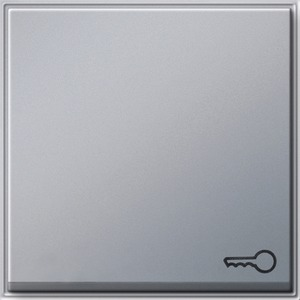Wippe Symbol Schlüssel für TX_44 (WG UP) Farbe Aluminium