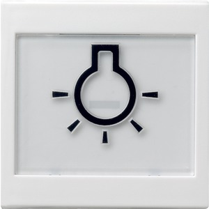 Wippe abtastbar beschriftbar Symbol Licht System 55 reinweiß