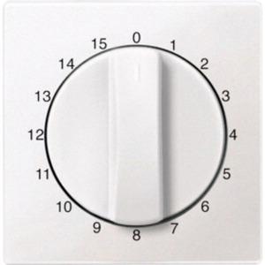 Zentralplatte für Zeitschalter-Einsatz 15 min polarweiß