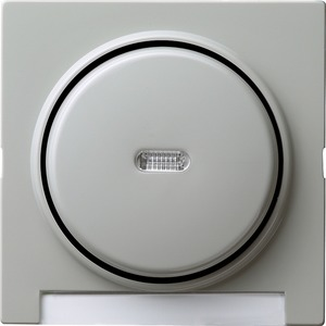 Wippe Kontroll beschriftbar für S-Color grau