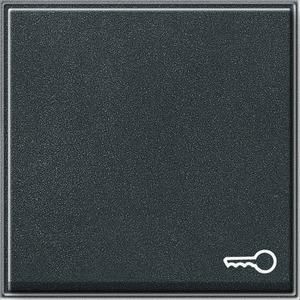 Wippe Symbol Schlüssel für TX_44 (WG UP) anthrazit