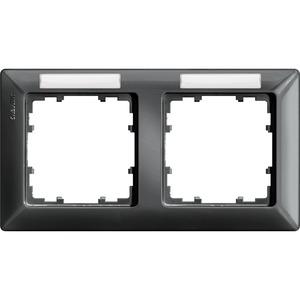 2-fach Rahmen mit Textfeld DELTA line carbon-metallic 151x80mm waagr.
