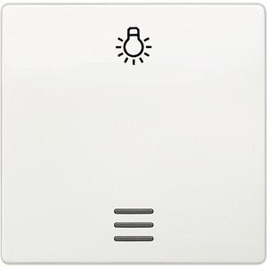 Wippe I-System mit Fenster und Symbol Licht titanweiß