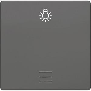 I-System carbon-metallic Wippe mit Fenster mit Symbol Licht