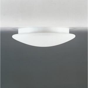 Decken- und Wandanbauleuchte 23275 Opalglasleuchte E27 2x60W