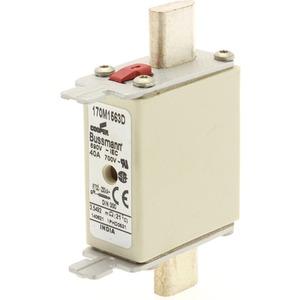 Sicherungseinsatz Niederspannung 40A AC 690 V DIN000