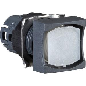 Leuchtdrucktaster 18X18 O.TPL. ZB6-CW0