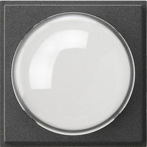 Abdeckung für Farbkamera für TX_44 anthrazit