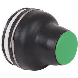 Frontelement grün für Drucktaster XAC-B9113