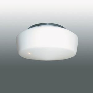 Decken- und Wandanbauleuchte 17031 Opal-Nurglasleuchte IP40
